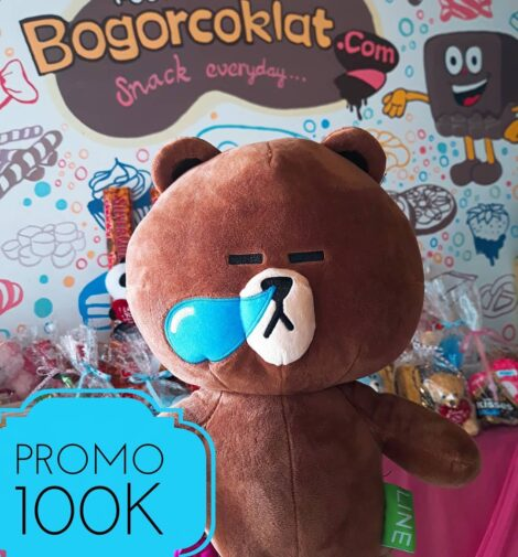 boneka teddy brown line
